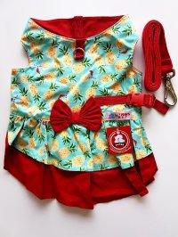Vestido guia Abacaxi