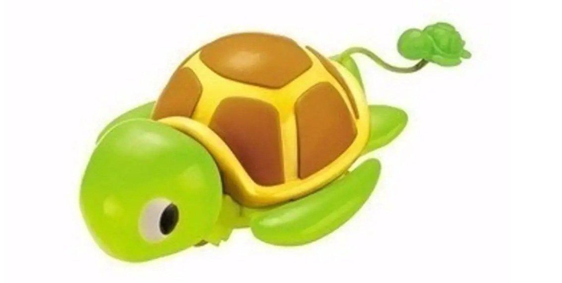 Bichos Divertidos À Corda Tartaruga Verde - Zoop Toys Zp00064