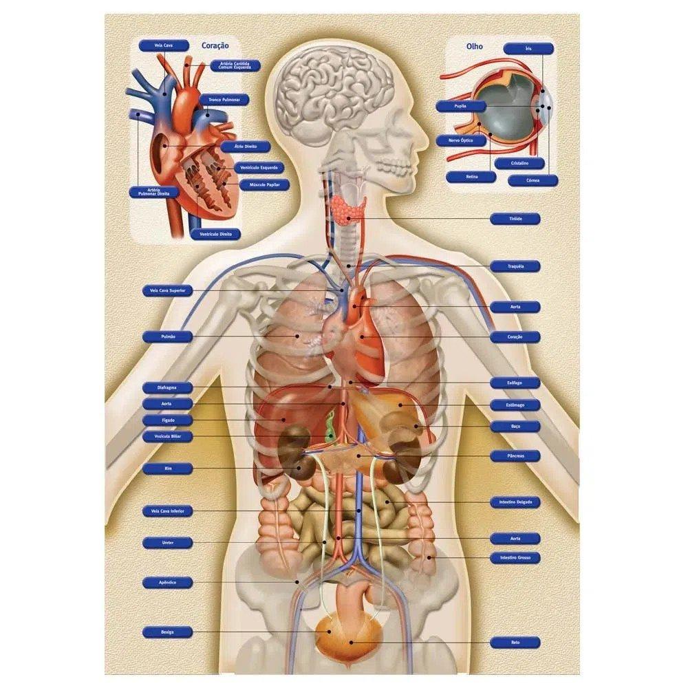 Quebra-cabeça Puzzle 250 Peças Corpo Humano Grow 02443