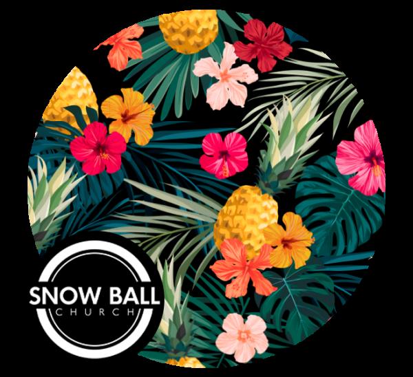 Snowball Hawaii